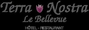 Restaurant Le Bellevue - Tarascon